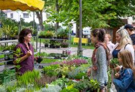 Farmářský a jarní trh