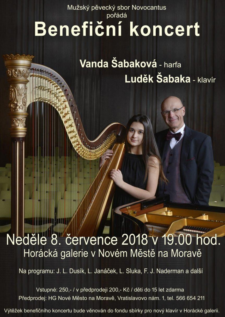 Benefiční koncert: harfa a klavír