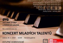 Koncert mladých talentů