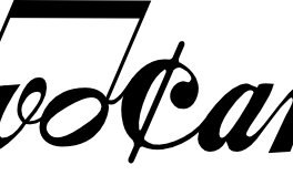 Koncert Novocantus