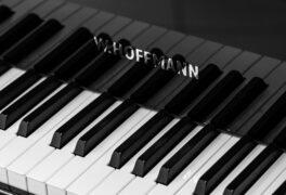 Koncert Magdalena Trödlerová – klavír, Ondřej Horňas – varhany