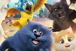 Kino – Příběh koček