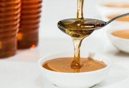 Novoměstské slavnosti medu aneb sladké ukončení léta